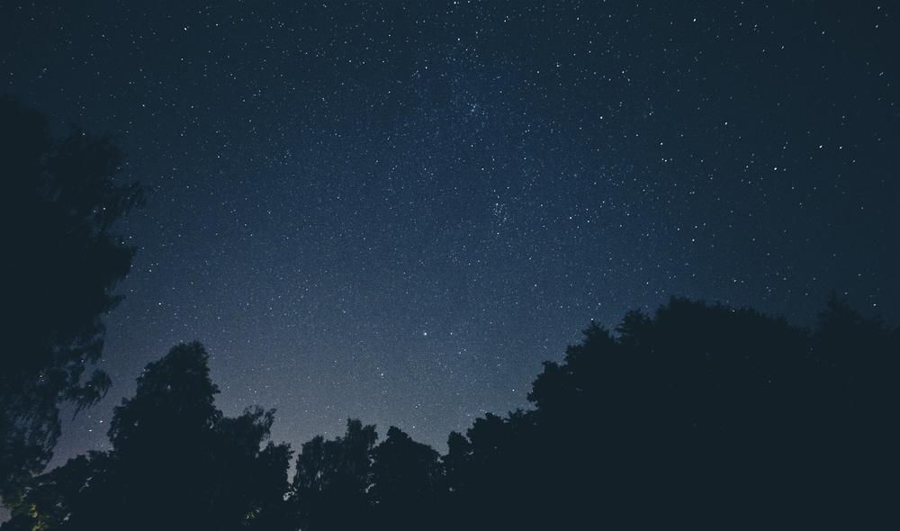 stars up.jpeg