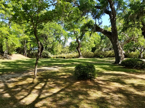 Expansive shaded lawn framed by centuries-old azaleas and moss-draped live oaks