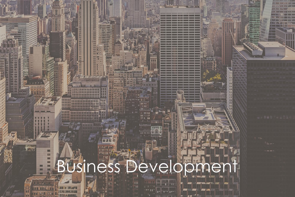Business Development  (Ideal for singular objective)  – business Buying opportunities for investment firms and advisors  – creating marketing  material either online or physical  – providing market analysis and appetite for product  – basic distribution to our database of investment professionals