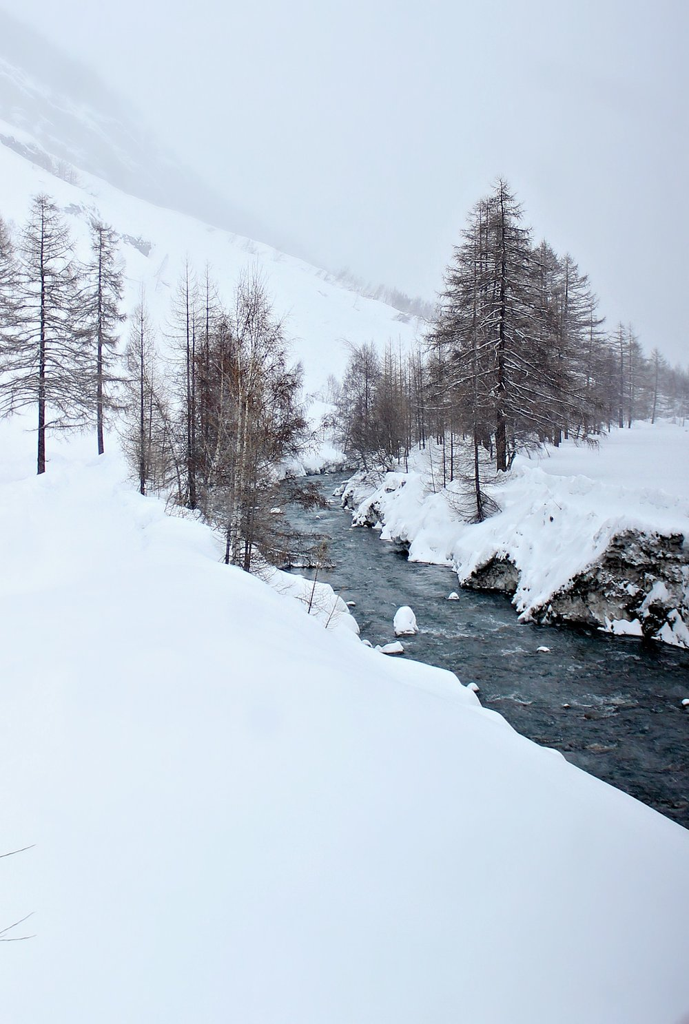 river-bank-snow-trees-from-train2.jpg