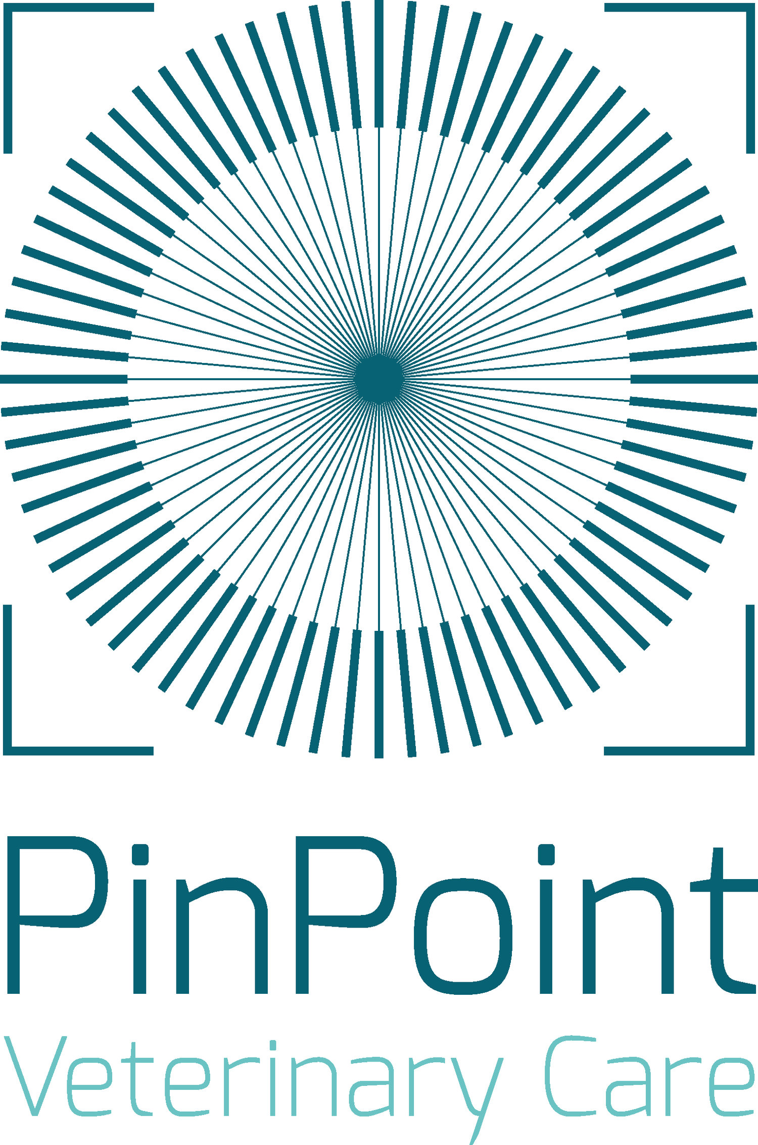 PinPoint Veterinary Care
