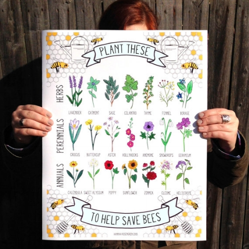 Plant These To Help Save Bees Print [$14-32] by way of Hannah Rosengren