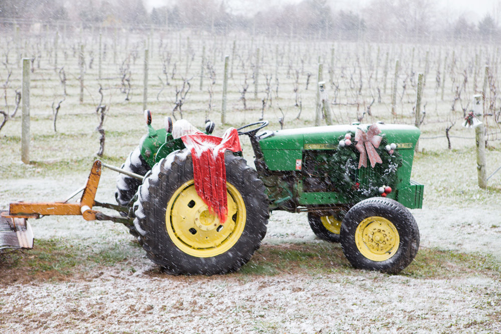 tractor next to the vineyard in the snow.jpg