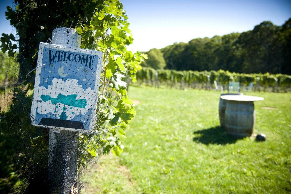welcome sign by vineyard.jpg