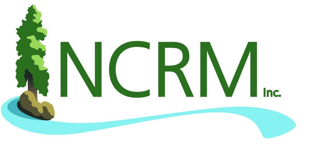 NCRM Logo.jpg