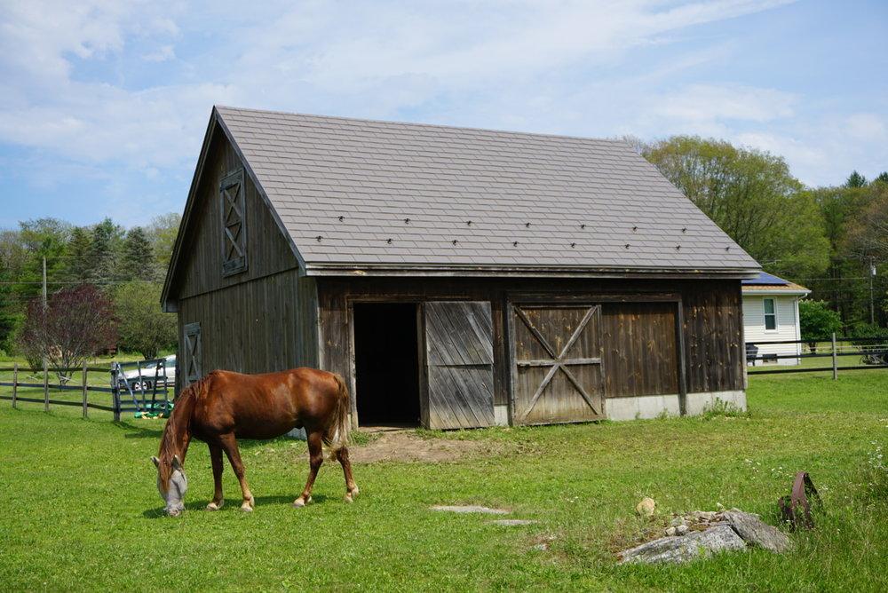 Embossed Driftwood Cedar Metal Roof
