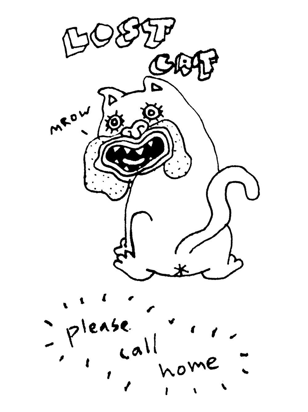 cat-4.jpg