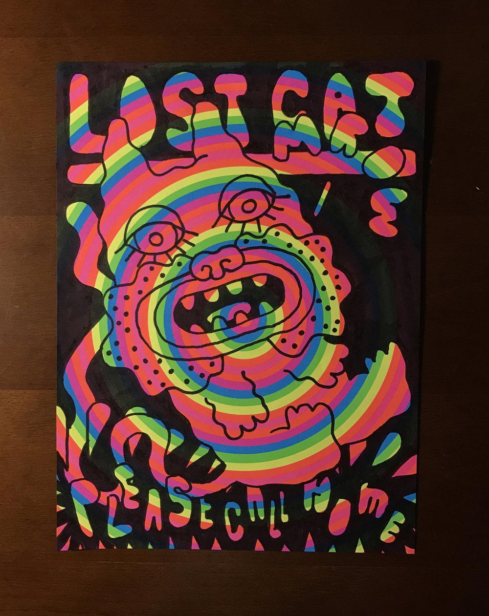Jarad-Solomon-Lost-Cat-rainbow-3.jpg