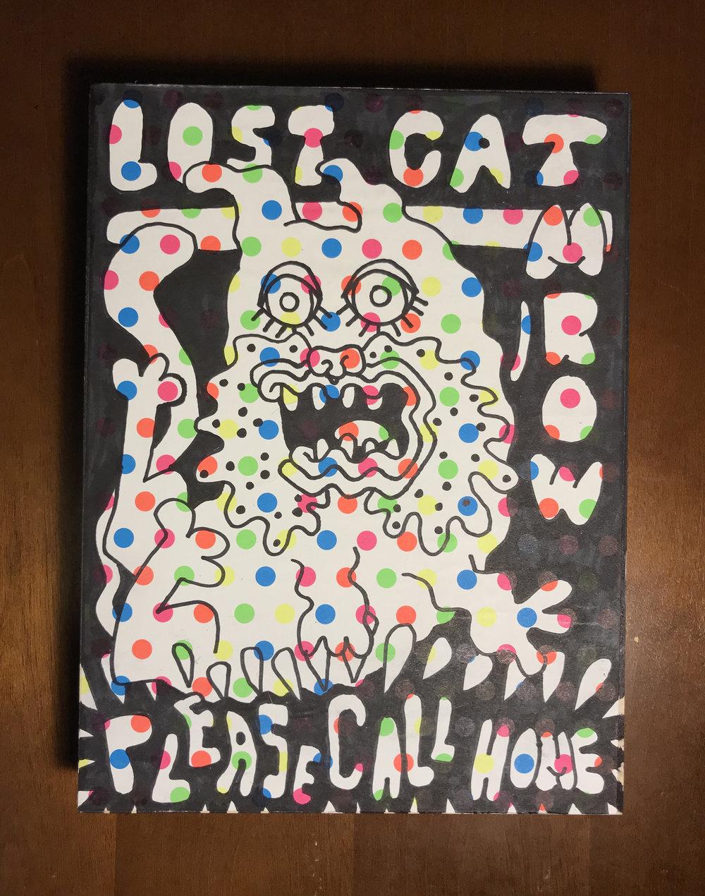 Jarad-Solomon-Lost-Cat-rainbow-7.jpg
