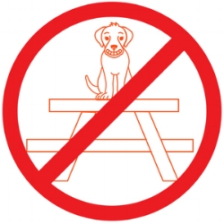 Please keep our furry friends off of tables and chairs