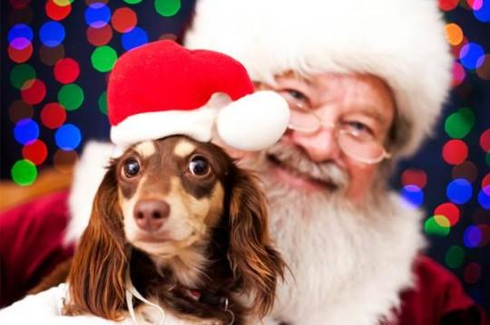 Photos with Santa -