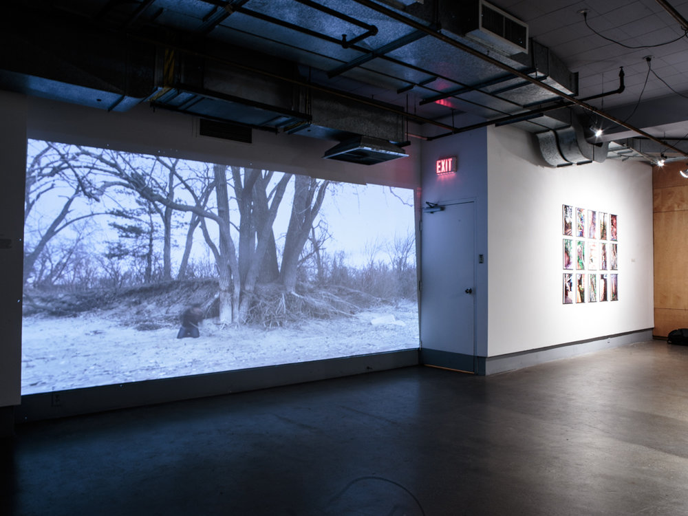 Installation view  It grasps from an environment it once formerly knew