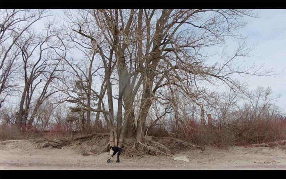 Still from  It grasps from an environment it once formerly knew  (digital video)