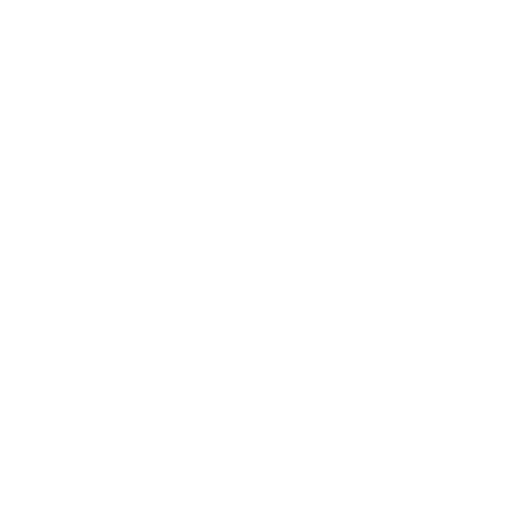 Web Header Opening Party .png