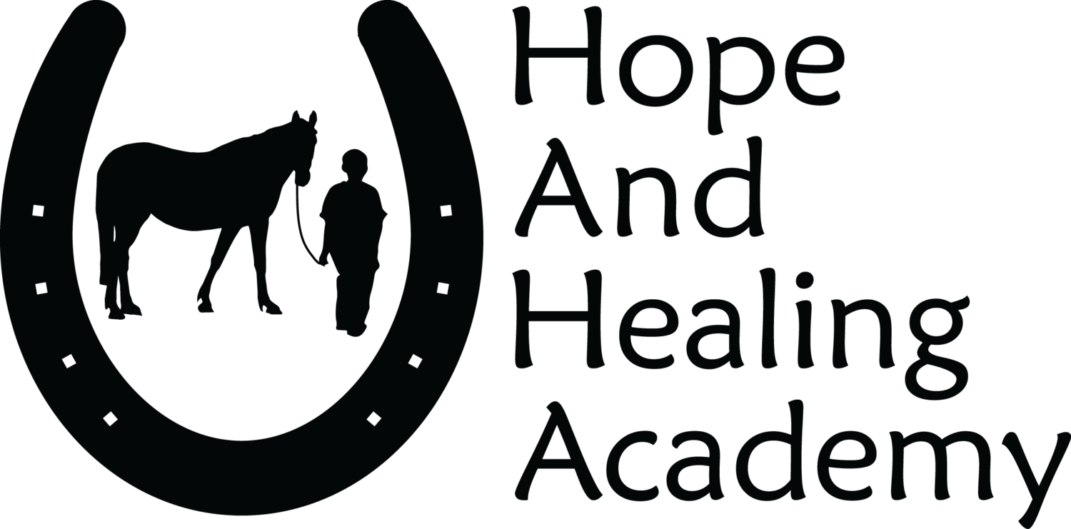 Hope and Healing Academy