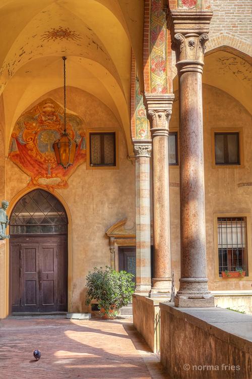 "IT295: ""Padua: Portico and pigeon"""