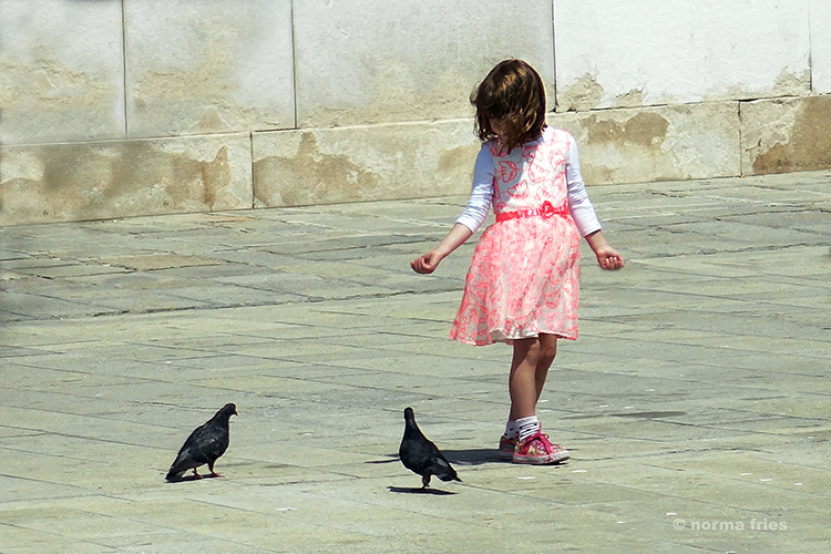 "IT309: ""Venice: Girl feeding pigeons"""