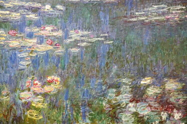 FR411 - Paris: Detail from Monet mural