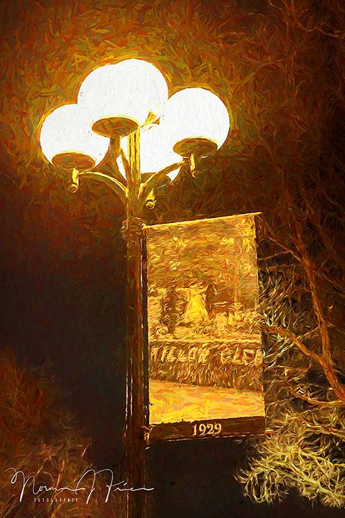 WG619: Historic Willow Glen at night