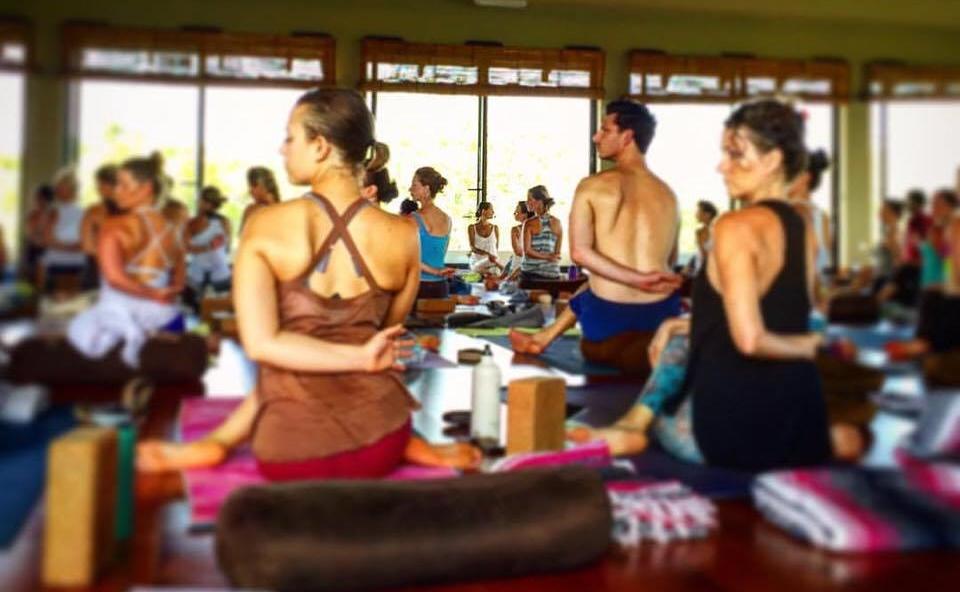 Yoga. Massage. Health Education. Ayurveda - Take Charge of Your Life