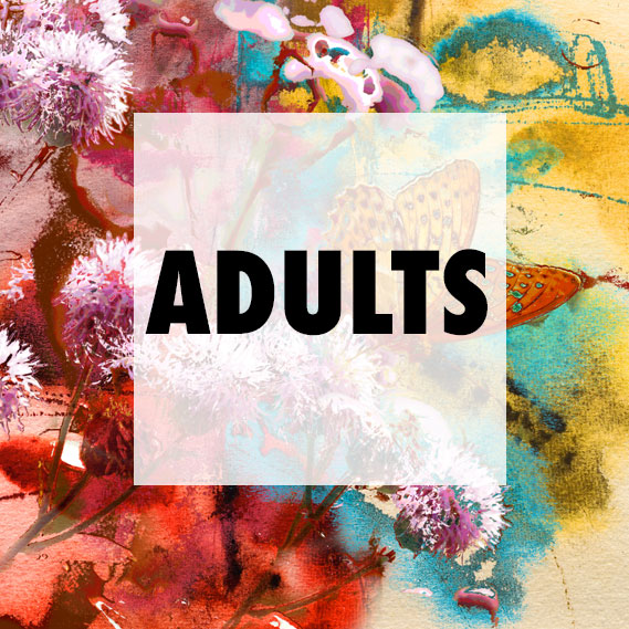 adultclass.jpg