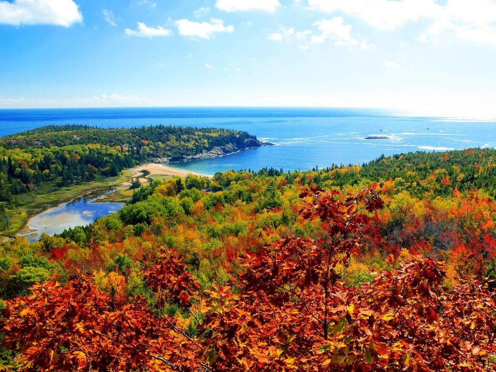 Fall Maine.jpeg