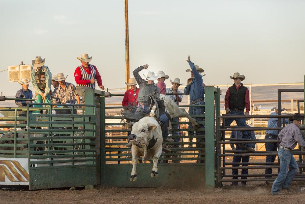 Rodeo 53.jpg