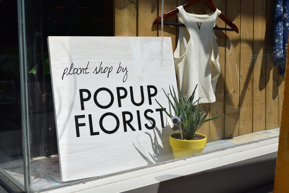 Plant Shop at Vaute NYC, August 2016