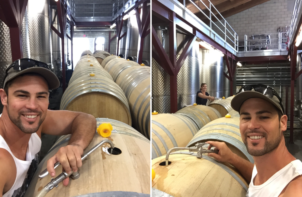 TOPPING CHARDONNAY BARRELS DURING BARREL FERMENTATION - (BARREL FERMENTATION MEANS THAT THE YEAST HAS BEEN ADDED IN BARREL NOT IN TANK - IT IS KNOWN AS A TRADITIONAL METHOD IN CHABLIS AND BURGUNDY France, as well as for being a LABOR INTENSIVE METHOD OF MAKING THE highest quality CHARDONNAY)