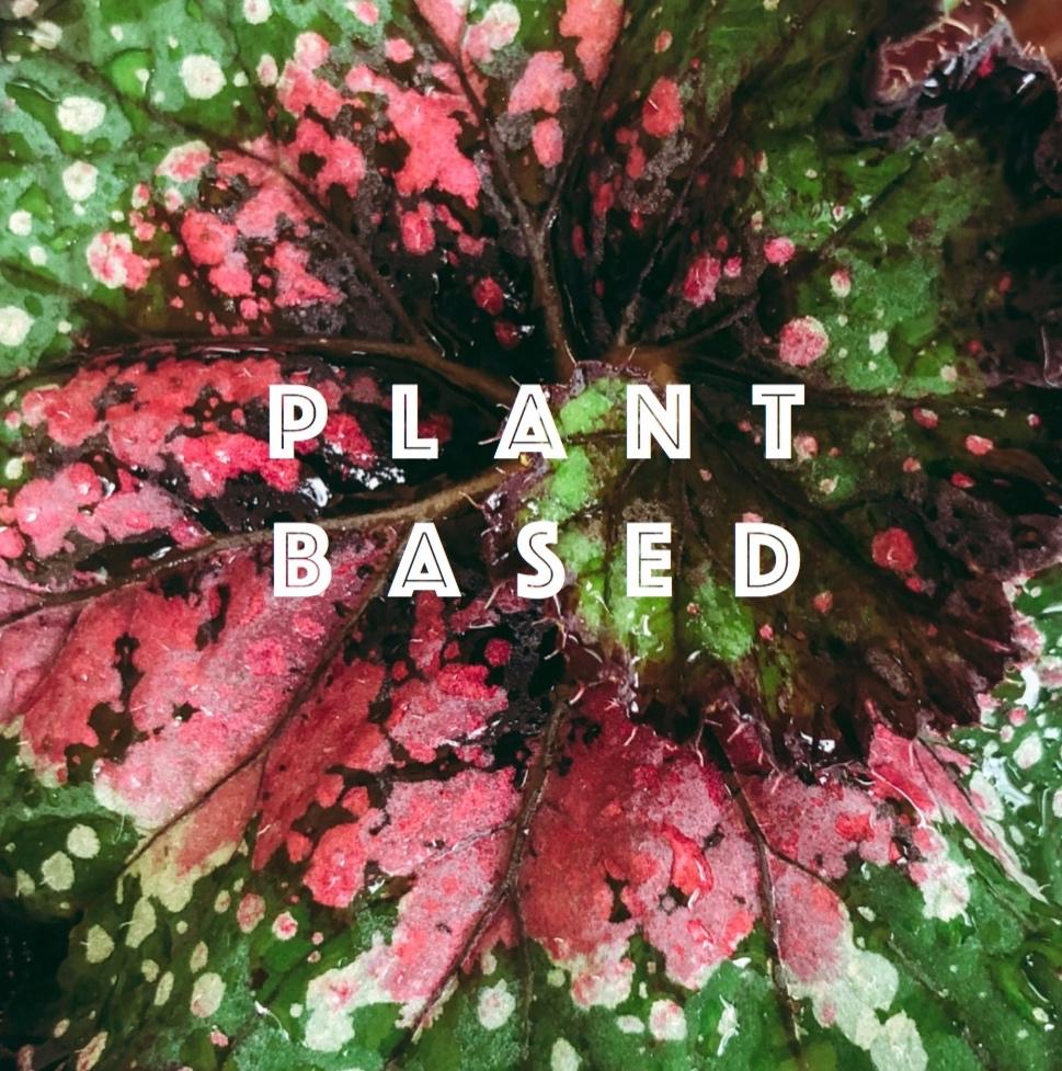 plant based.jpg