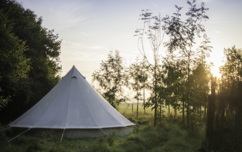 tent-morning-sun.jpg