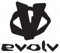 2011.evolv.logo
