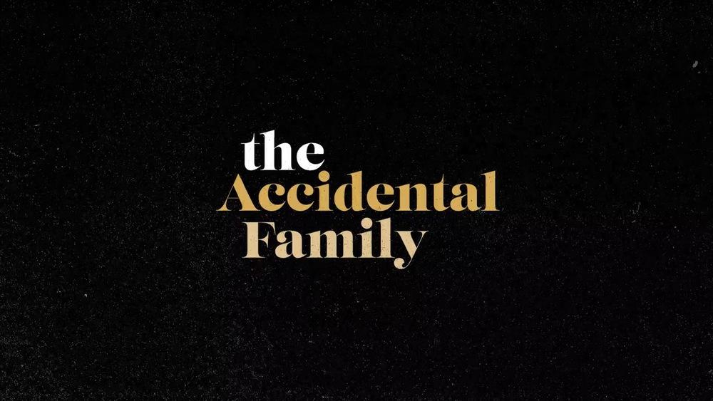 The Accidental Family.jpg