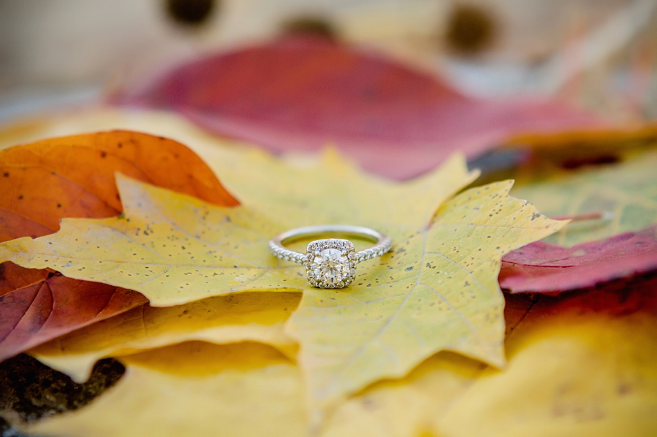 Cj_Photography-WI_Engagement_0024.jpg