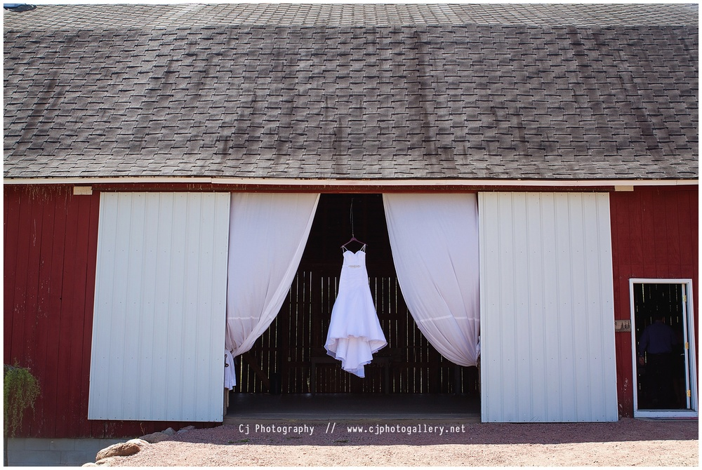 Cj_Photography-Wisconsin_Photographers