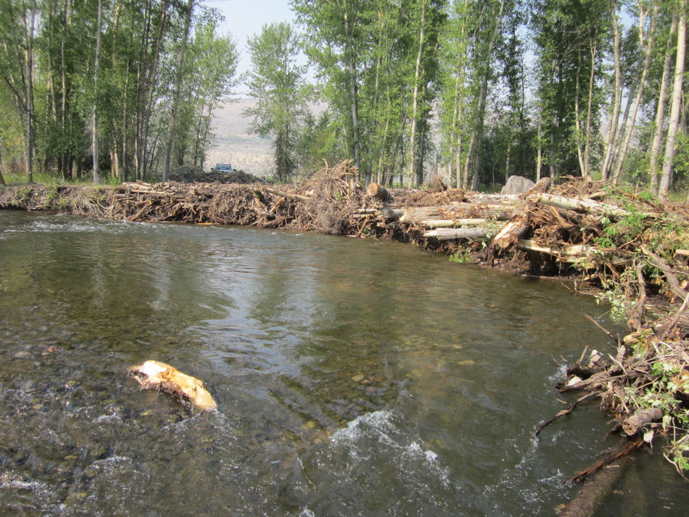 Completed engineered log jam to protect an eroding bank, blended into an existing natural log jam