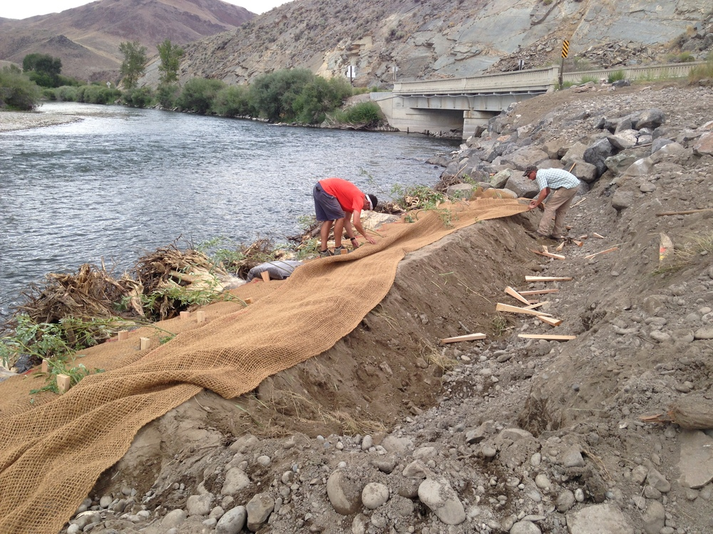 During construction - downstream - installing erosion control fabric between layers of plantings