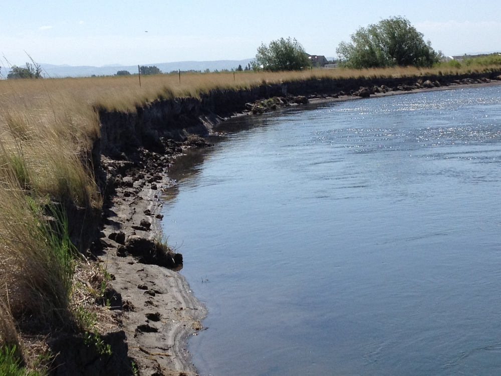 Before - bank is eroding and unstable