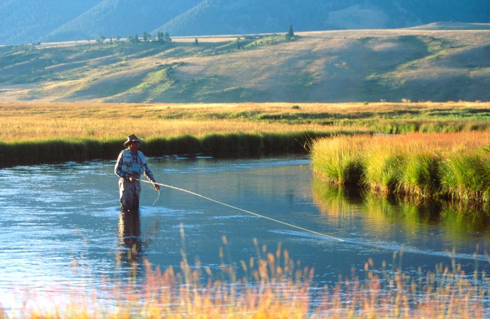 man flyfishing on restored habitat