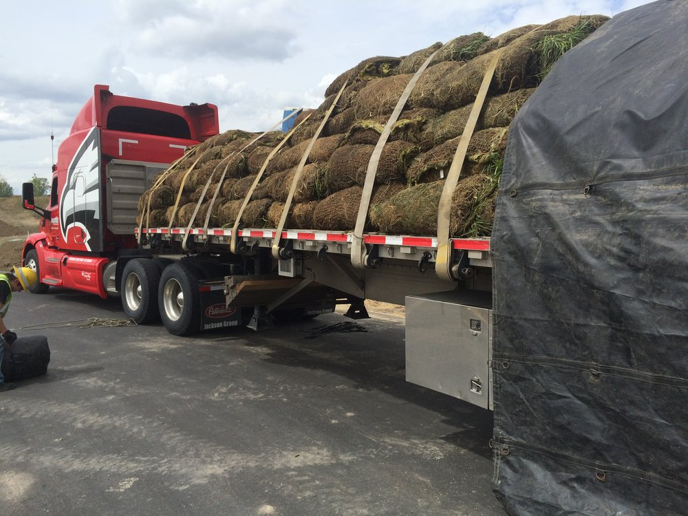 Wetland sod arriving on a semi truck.