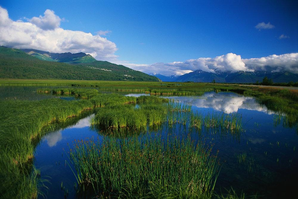 environmental consulting mountain stream