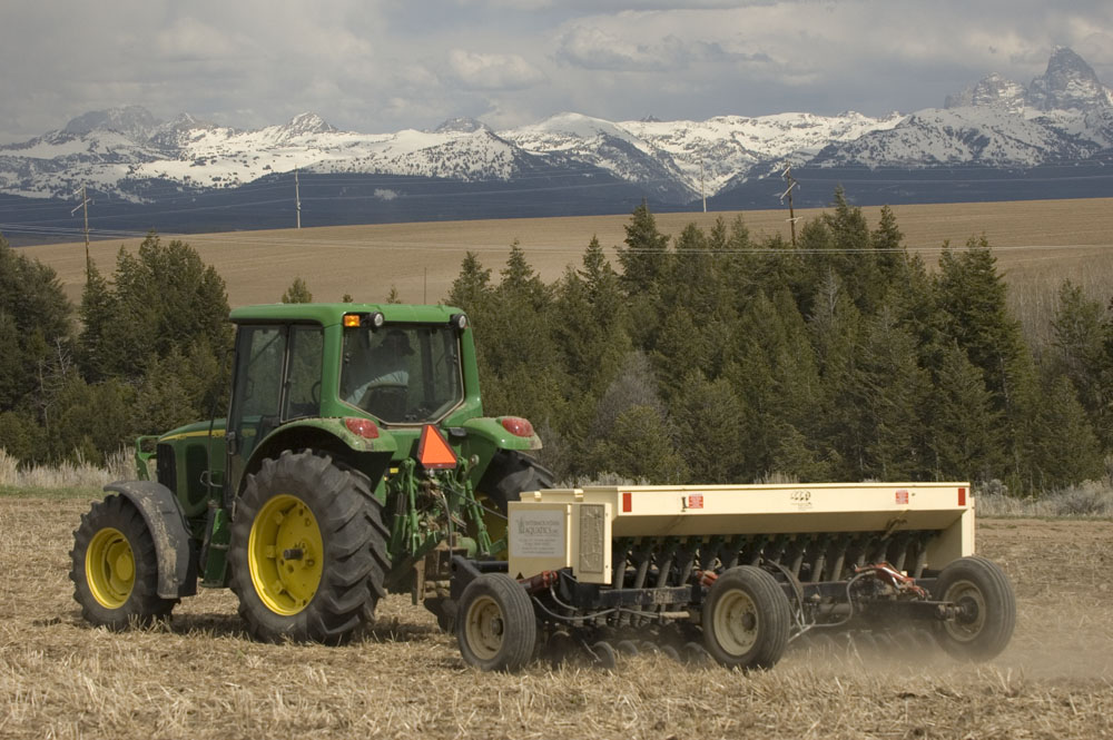 HRR seeding