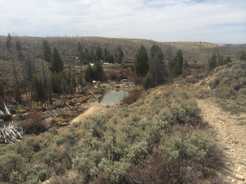 habitat restoration appraisal willow creek