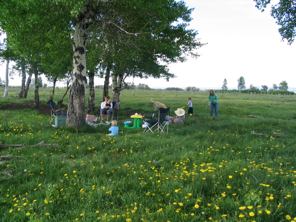 range management and habitat restoration in beautiful field
