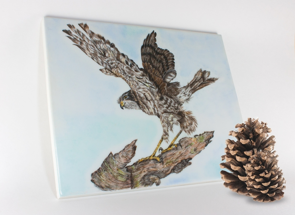 Painting on Porcelain Tile