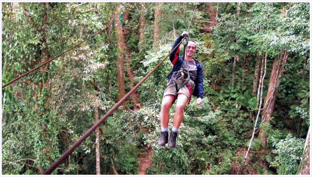 Ziplining through the jungle canopy