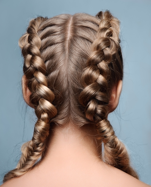 Dutch Braid.jpg