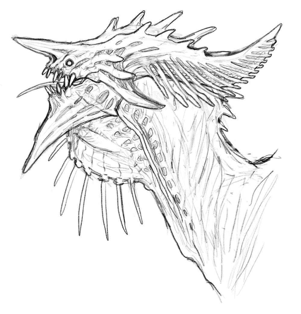 sketchhead.png