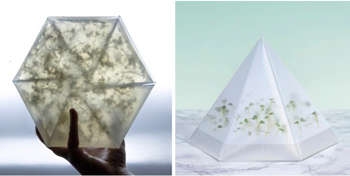 TOMORROW MACHINE | INFARM - MICROGREENS GROWING KIT  | Image courtesy of Dwell | Dwell on Design 2015