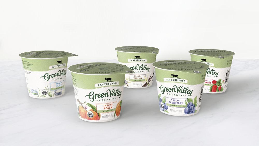 GVC_3D_Family_Yogurt6oz_Marble_v1.jpg